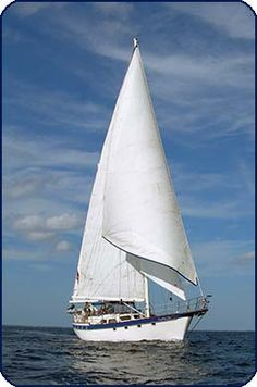 Megayacht Services