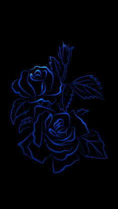 Wallpaperby Artist Unknown In 2019 Black Wallpaper Iphone Wallpaper Blue Purple Turquoise Violet Blue . Blue Roses Wallpaper, Black Background Wallpaper, Black Wallpaper Iphone, Flower Phone Wallpaper, Butterfly Wallpaper, Cellphone Wallpaper, Galaxy Wallpaper, Hd Wallpaper, Beautiful Rose Flowers