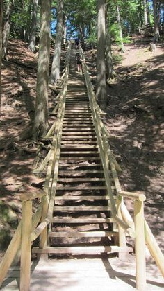 Jacob's Ladder in Truro, Nova Scotia's glorious Victoria Park (photo courtesy of Tiziana and Marco).