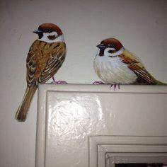 #birds #sparrow #daniel & maiwenn in Delft