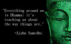 Ajahn Sumedho Quote 14