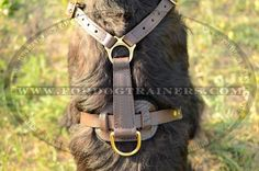 Leather #Dog #Harness for Tracking and Walking - $59.00 | www.fordogtrainers.com