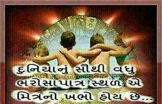 Duniyanu suthi vadhu bharoshapatra sathal e mitrano kahbho hoy che