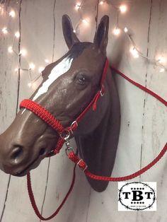 Hot Pink 4 Knot Horsemanship Training Bitless Bridle Rope Halter Side Pull Rings