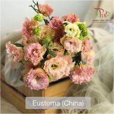 Heartfelt emotions towards someone else ••你悄悄地出现,教会我如何思念。 Modern Meaning, Floral Wreath, Symbols, Wreaths, Home Decor, Homemade Home Decor, Door Wreaths, Icons, Deco Mesh Wreaths