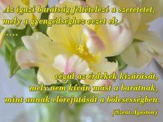 Szép, kedves idézetek, jókívánságok, szép képek: Az igazi barátság feltételezi a szeretetet Nap