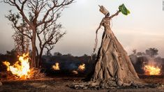"""velvetbrown: """" a—fri—ca: """" From the series 'Prophecy' by the beninese photographer Fabrice Monteiro who lives and works in Dakar, Senegal. Inspired by the art photographer Fabrice Monteiro and the. Art Magique, World Pictures, Photo Series, Environmental Art, West Africa, Mother Earth, Fashion Photo, High Fashion, Fashion Images"""