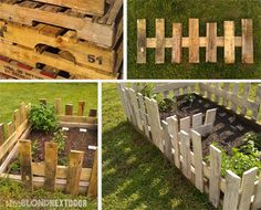 You can bundles of cheap slat wood at Lowes. Throw together a little rustic gate to protect plants. You know you can!