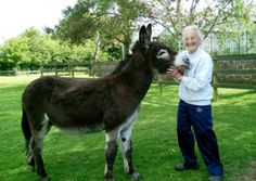 A foster donkey on loan to a pensioner has foiled an attempted burglary – with his huge bellowing bray.