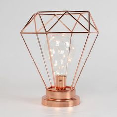 Your home, event or wedding décor will be the talk of the town with this stunning rose gold terrarium style lamp, with traditional filament style bulb. Require…