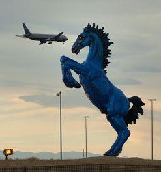 Photos: Blue Mustang at Denver International Airport