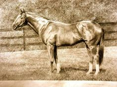 Triple Crown Winner #9  Secretariat 1973 Secretariat(March 30, 1970 – October 4, 1989) was an AmericanThoroughbredracehorsethat, in 1973, became the firstU.S. Triple Crownwinner in 25 years. He set race records in all three events in the series – theKentucky Derby(1:59 2/5), thePreakness Stakes(1:53), and theBelmont Stakes(2:24) – records that still stand today.[2][3]He is considered to be one of the greatest Thoroughbreds of all time.