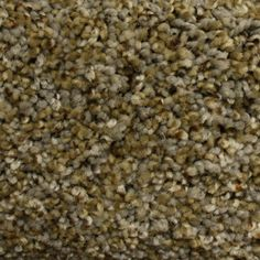 STAINMASTER PetProtect Lexington Textured Ridge Run Interior Carpet at Lowe's. Carpet with character and distinct hues that will enhance any home's decor. Accessible Beige, Carpet Remnants, Axminster Carpets, Carpet Stores, Textured Carpet, Carpet Samples, Plush Carpet, Pet Odors, Best Carpet