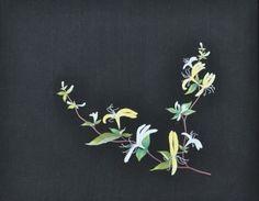 인동초.....김예진 들꽃자수 : 네이버 카페