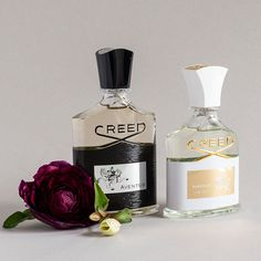 Explore the House of Creed's Best Colognes, Perfumes & Fragrances in Best Sellers. Viking, Aventus, Love in White for Summer, and so many more. Perfume Sale, Perfume Gift Sets, Perfume Scents, Creed Perfume, Creed Fragrance, Top Fragrances For Women, Daisy Perfume, Perfume Reviews, Fragrance