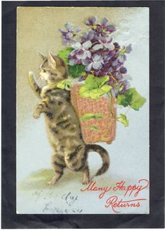 MAGUIRE ARTIST OLD POSTCARD ANTHROPOMORPHIC CAT CARRYING BASKET OF VIOLETS W & K. Helena Maguire.
