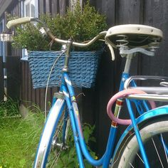 Nest, Bicycle, Park, Nest Box, Bike, Bicycle Kick, Trial Bike, Parks, Bicycles