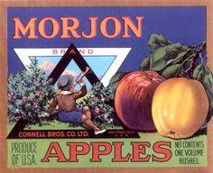Merchandise & Memorabilia **an Original Fruitcrate Label** Fast Color Morjon Vintage Connell Bros Apple Crate Label Advertising