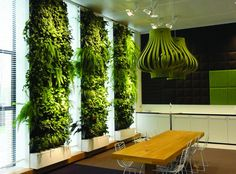 EVERGREEN DIRECT -- English company that sells all kinds of bespoke artificial greenery --for green walls, shrugs, etc.