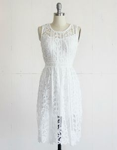 Mindy Lace Fit & Flare Dress