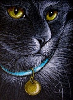 Art: BLACK CAT - AQUAMARINE COLLAR by Artist Cyra R. Cancel