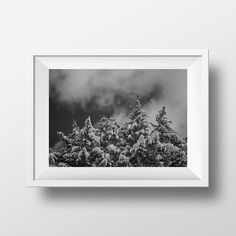 Love a good gift? #Snow Covered #Trees #FineArtPrint http://crwd.fr/2rJFpH4  #fineartphotography #bwphotography #winter #photography #photographyeveryday #photographyislife