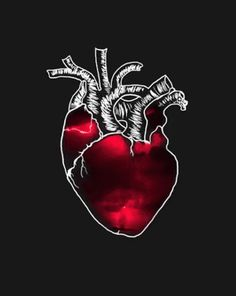 Animated gif shared by María José. Find images and videos about gif, vida and heart on We Heart It - the app to get lost in what you love. Corazones Gif, 5 Elements, Anatomical Heart, Human Heart, Anatomy Art, Aesthetic Gif, Gif Pictures, Black Wallpaper, Heart Wallpaper