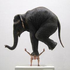 """focus-damnit: """" (via An elephant on the back by Fabien Mérelle) """""""