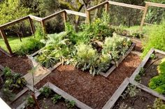 Terraced garden boxes are a great solution for those with uneven or sloping backyard spaces. Just be sure to install a proper drainage system. If water doesn't drain properly, it will stagnate and cause damage to your terrace structure.