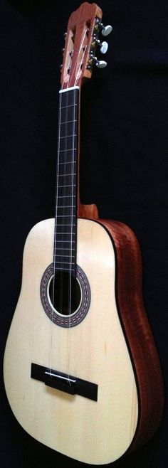 frettedchordophones: Problems with my ISP mean I have missed a few days; but I have kept a note and will catch up - This is todays an Acousticmelo Tres Lardys Chordophone of the day - a year ago --- https://www.pinterest.com/lardyfatboy/