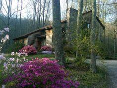 My yard in the spring ahhh....