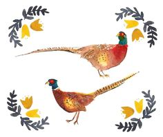 The Very Pleasant Pheasants Created by Anna Woodcock Illustration   http://www.annawoodcockillustration.com/  #bird #pheasant #pheasants #feather #floral #hunt #country #countrychic #countyside #devon #farm #illustration #watercolour #watercolor