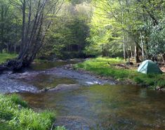 Biggest Adventure: Overall Run Overall Run in Virginia's Shenandoah National Park is best known for having the tallest waterfall in the park, at 93 feet. While impressive and beautiful when the stream runs high in the spring, during summer months...