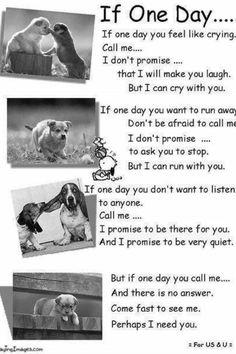 A true friend :)