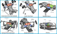 Top 6 Exercises to Build Chest Muscles - So Cool