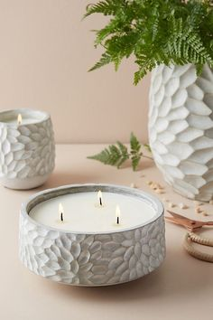 Anthropologie candles are the best - and this cement carved chrysanthemum vessel is so pretty! The citrus bergamot and white verbena pear scents are lovely, so refreshing and the three-wick soy candles burn forever! Ceramics Projects, Clay Projects, Clay Crafts, Pottery Bowls, Ceramic Pottery, Pottery Art, Hand Built Pottery, Ceramic Decor, Diy Becher