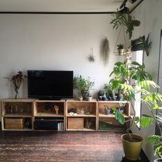 romimushiさんの、りんご箱,テレビ,植物のある暮らし,レデッカー,リビング,のお部屋写真 Interior Architecture, Interior Design, Dream Decor, Home Decor Wall Art, New Room, Contemporary Interior, House Rooms, Small Spaces, Furniture Design