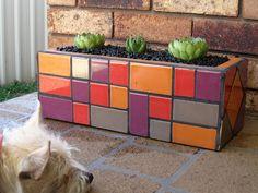 my first mosaic planer box. Mosaic Planters, Mosaic Vase, Mosaic Flower Pots, Pebble Mosaic, Mosaic Diy, Mosaic Garden, Mosaic Crafts, Mosaic Projects, Mosaic Tiles