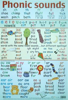 Phonic Sounds - wouldn't hurt to have this on my wall with a strategy for decoding Looooong words. Even upper level students will forget their phonics when faced with a 3+ syllable word.