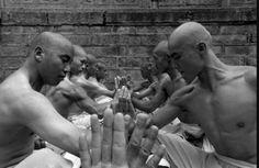 Shaolin unity