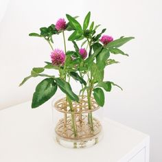 Äng vas mini Vaser, Ikebana, Garden Inspiration, Flower Power, Flower Arrangements, Bouquets, Glass Vase, Table Settings, Decor Ideas