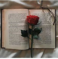 Image uploaded by Lucian. Find images and videos about vintage, aesthetic and flowers on We Heart It - the app to get lost in what you love. Aesthetic Roses, Book Aesthetic, Red Aesthetic, Aesthetic Pictures, Book Wallpaper, Tumblr Wallpaper, Flower Wallpaper, Wallpaper Backgrounds, Animal Wallpaper