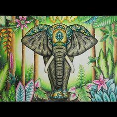 @Regrann from @katerina.zhunusbayeva -  Inspired by Magical Jungle #coloring #coloringbook #elephant #johannabasford #magicaljungle #regrann