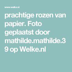 prachtige rozen van papier. Foto geplaatst door mathilde.mathilde.39 op Welke.nl