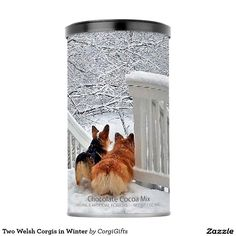 Two Welsh Corgis in Winter Hot Chocolate Drink Mix