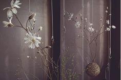 Gras Bonsai-Ideen zum Selber-Machen
