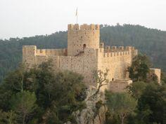 CASTELL DE FARNERS ( Selva , Girona ) .