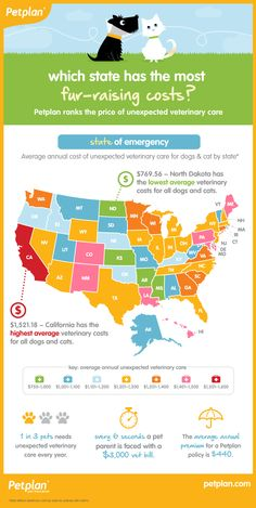 10 States With Highest Unexpected Veterinary Costs | Petplan Pet Insurance Infographic