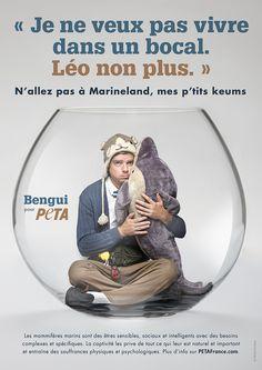 Avec Bengui, défendez les animaux prisonniers de Marineland | Agissez | PETA France.com - 1 | PETA France