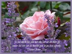 Afrikaanse Inspirerende Gedagtes & Wyshede: Helen Steiner Rice Inspirasies Helen Steiner Rice, Flowers, Afrikaanse Quotes, Inspirational Quotes, Messages, Life Coach Quotes, Inspiring Quotes, Royal Icing Flowers